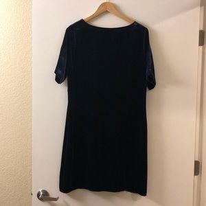 Sundance Dresses - Midnight Blue Velvet Shift Dress